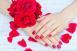 Hands with pink manicured fingernails and beautiful roses