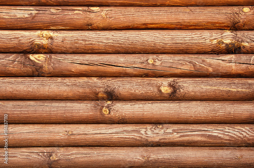 Wooden wall from logs Poster