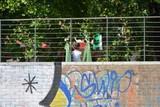 periferia di Torino, giardini pubblici