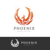 Phoenix logo,Eagle logo,Brand identity white bird and wing concept.