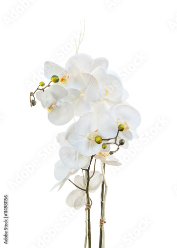 Floral arrangement from artificial orchid flowers.