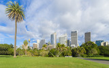 Royal Botanic Garden with cityscape of Sydney, Australia