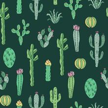 Cactus naadloos patroon. Vector achtergrond met cactussen en vetplanten