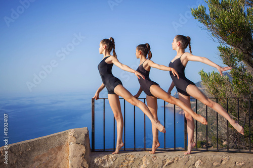 Poster gymnastic or ballet dance pose