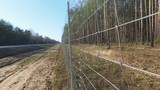 Protective mesh on the side of the road from wild animals