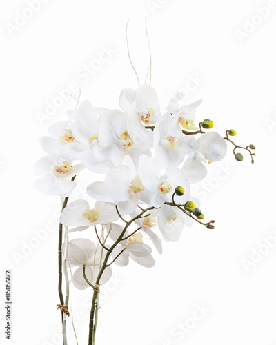 Fototapeta Floral arrangement from artificial orchid flowers.