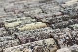 Antiguo tejado con musgo