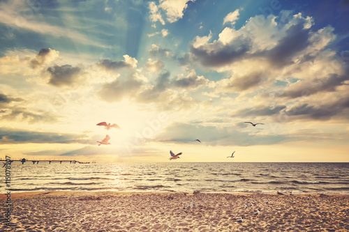 Fototapety, obrazy : Retro toned beach at sunset with flying birds.