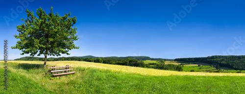 Poster Landschappen Grüne Landschaft im Sommer als Hintergrund
