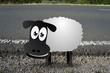 Schafe im Bild