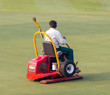 Man worker driving lawnmover on putting green.