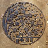 Manhole Cover at Ueno Park, Tokyo