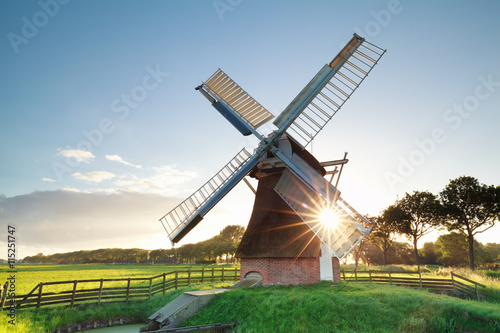 obraz lub plakat morning summer sunshine behind Dutch windmill