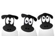 Drei Schafe
