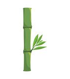 Nature and plant concept represented by bamboo plant icon. Isolated and flat illustration