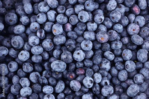 blueberry background Poster