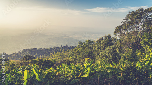 Fototapeta Landscape of mountain view at Phuthapboek Khoo kho , Phetchabun