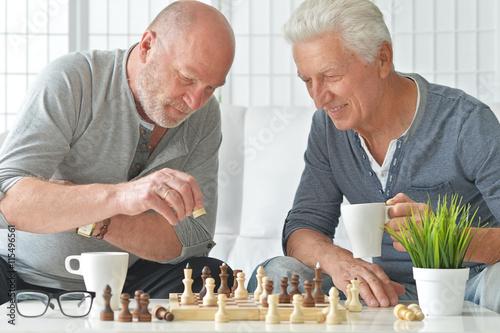 Poster senior men  playing chess