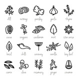 collection of herbs line icons - 115530319