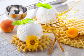 Ice Cream with apricot, Mint and waffles. Homemade product. On the wooden table.