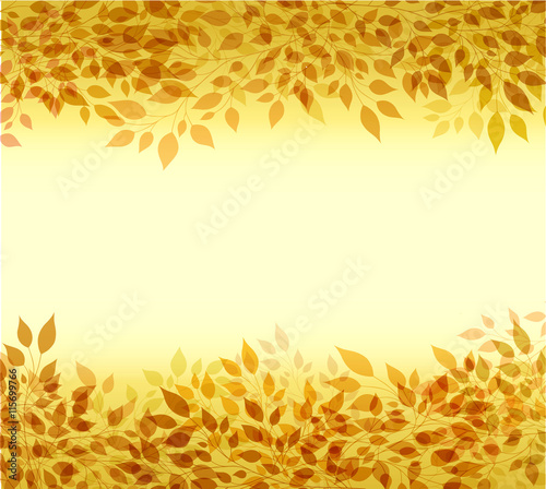 Fototapeta Autumn background branches and leaves
