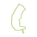 лицо и лист дерева