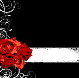 Roses background vector - 115750930