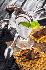 Ice Cream with chocolate candies, Mint and waffles.