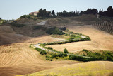 Summer landscape in Tuscany - 115830149