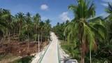 Aerial jungle road view of Koh Phangan, Thailand