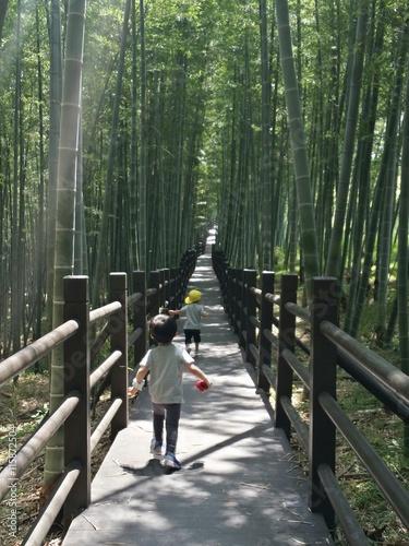 대나무숲 속으로 뛰어가는 남자아이들 Poster