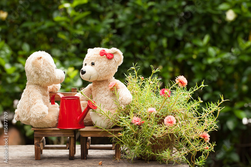 fototapeta na ścianę lovely teddy bear and watering can in the garden of love, conce
