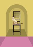 椅子の上のシャム猫