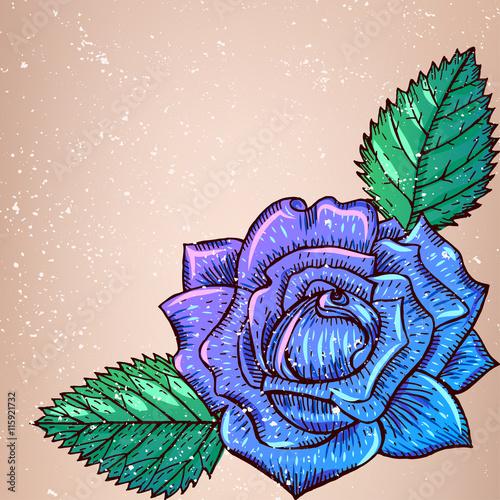 Zdjęcia na płótnie, fototapety, obrazy : Violet Rose with leaves