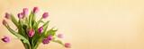 Pink tulip flowers bouquet