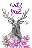 Naklejka poster with deer