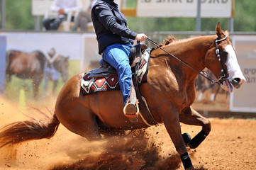 The side view of the rider in leather chaps sliding his horse forward and raising up the clouds of dust