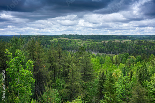 contryside ontario canada nature aerial view of the forest