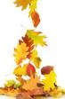 Herbst 68