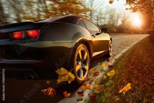 Plakat Auto im Herbst