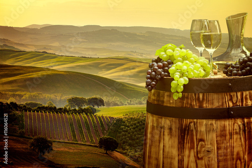 Fototapeta White wine with barrel on vineyard in Chianti, Tuscany, Italy