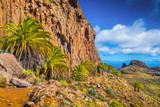 Amazing volcanic scenery with palm trees, Canary Islands, Spain