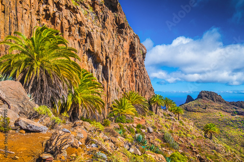 Foto op Canvas Canarische Eilanden Amazing volcanic scenery with palm trees, Canary Islands, Spain
