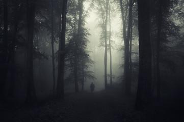 dark forest with man silhouette