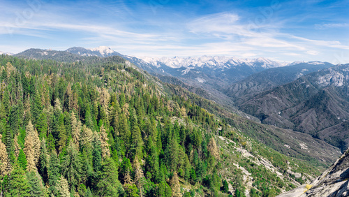 Aerial view of Sequoia Forest in California, United States