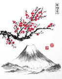 Oriental sakura cherry tree in blossom and Fujiyama mountain on white background. Contains hieroglyphs - zen, freedom, nature, happiness. Traditional Japanese ink painting sumi-e. - 116142777