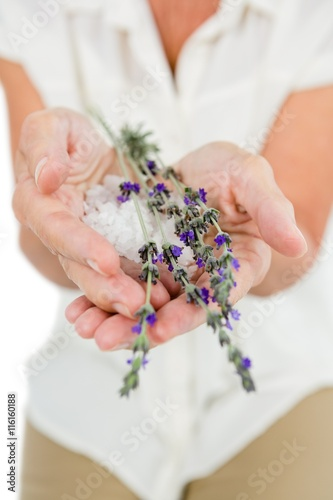Billede Midsection of woman holding flowers