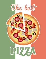 Pizza icon. Fast food design. Vector graphic