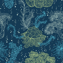 Colección de plantas marinas, hojas y algas. Modelo inconsútil de la vendimia con la flora marina dibujado a mano. ilustración vectorial en línea de style.Design arte de la playa del verano, decoraciones.