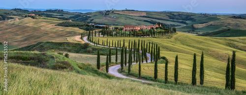 Tuscan countryside - 116253552